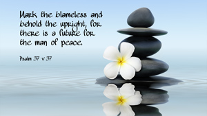 Mark the blameless and behold the upright, for there is a future for the man of peace. Psalm 37 v 37